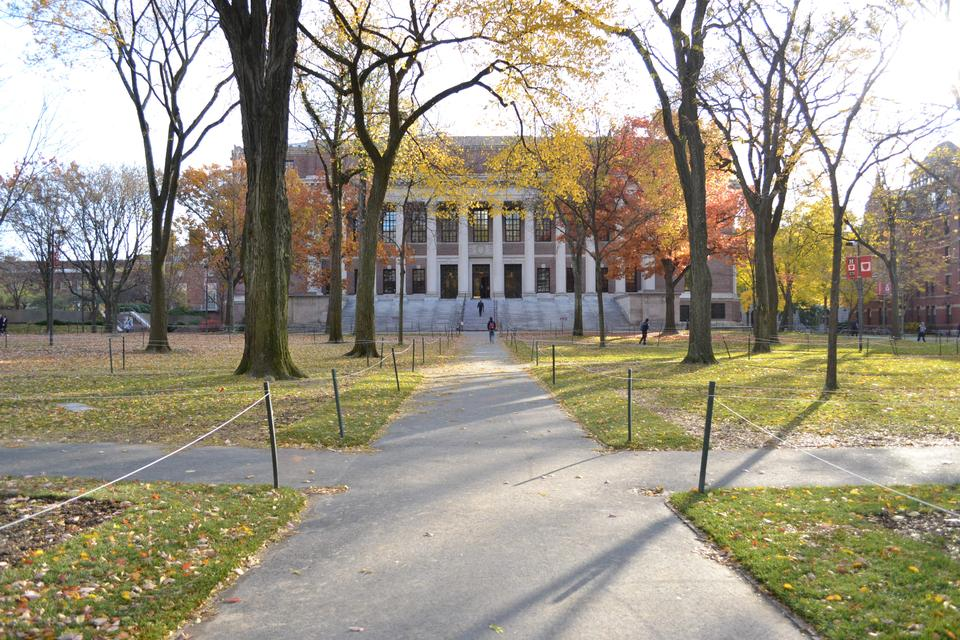 Tercentenary Theatre is usually a bustling and popular area for tourists, but with the increased security due to Occupy Harvard, the only people visiting Widener Library are students.