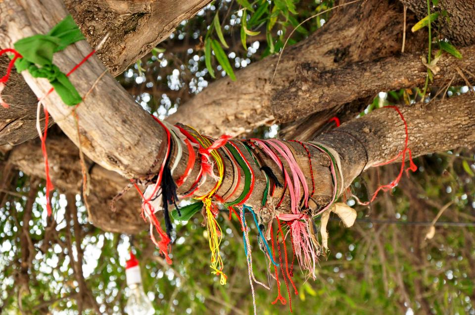 "Devotees tie colored threads around the tree branches in the shrine's courtyard asking the saint to grant their ""Mannat"". Each thread signifies unfulfilled wishes."