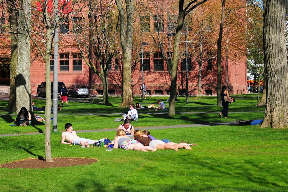 Students soak in the sun and heat by tanning and studying in Tercentenary Theater. Tuesday marked the week's second consecutive day with above 70 degree temperatures, drawing students out into outdoor public areas and courtyards.
