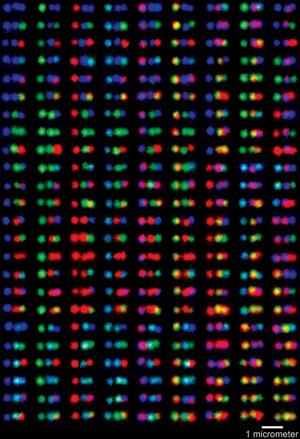 "Labeled DNA samples appear as multi-colored barcodes under fluorescent light at certain wavelengths. Harvard scientists at the Wyss Institute recently published their findings in ""Nature Chemistry."""