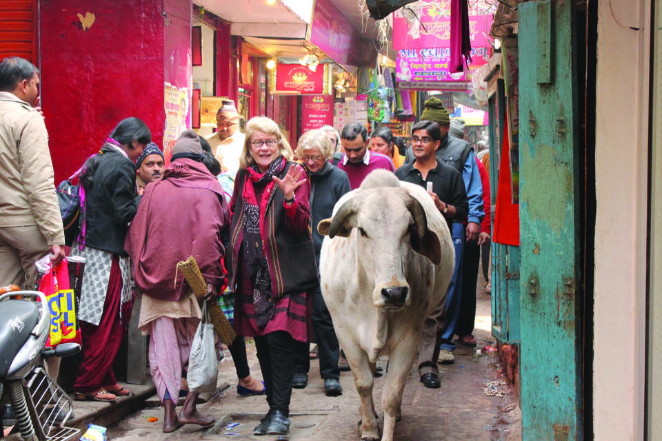 Professor of Comparative Religion and Indian Studies Diana L. Eck leads Harvard researchers through an alleyway in India.