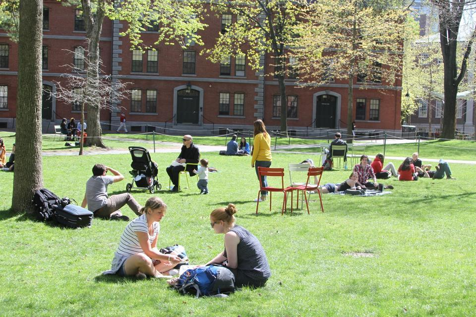 Students and faculty enjoy the sunshine in the Yard on Sunday during reading week before finals begin this Thursday.