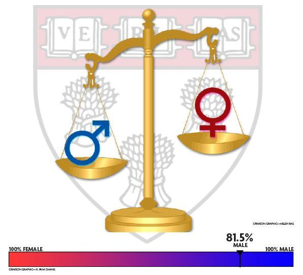 Male Law Professors Outnumber Female Counterparts Four to One