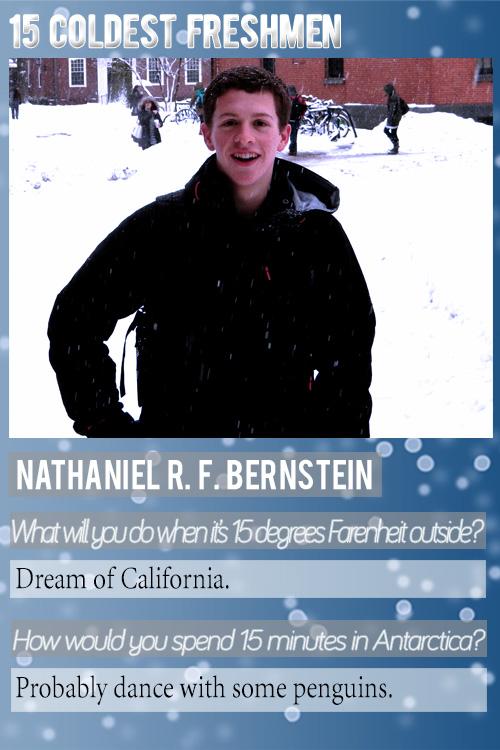 NBernstein