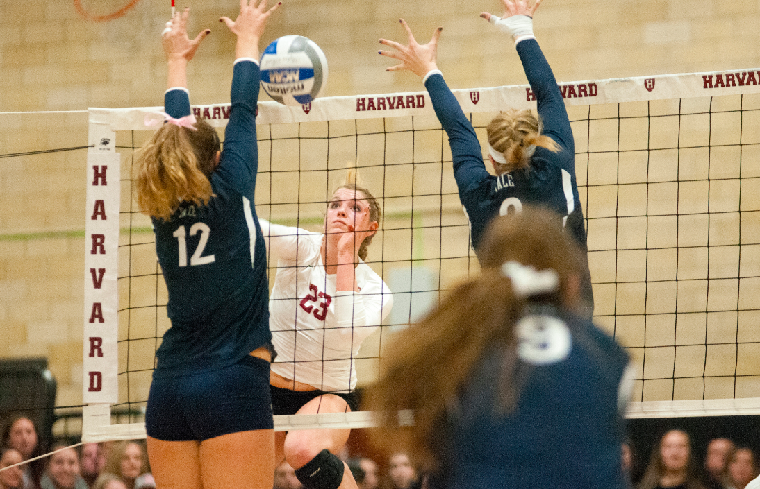 Sophomore setter Corie Bain nabbed Ivy League First Team honors in 2014 after pacing the Ancient Eight in service aces per set.