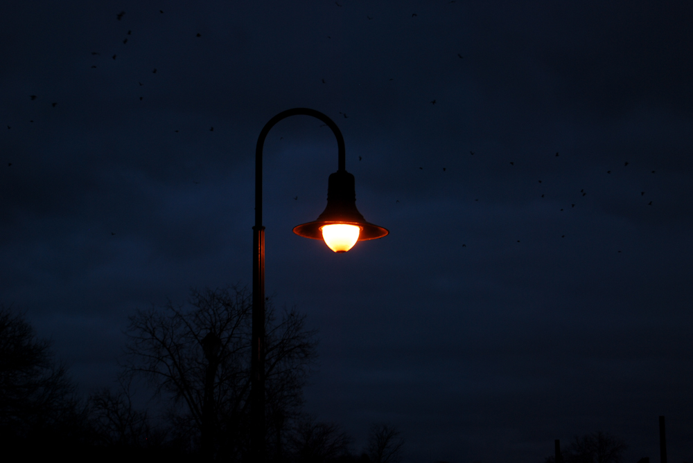 A lamppost. At night.