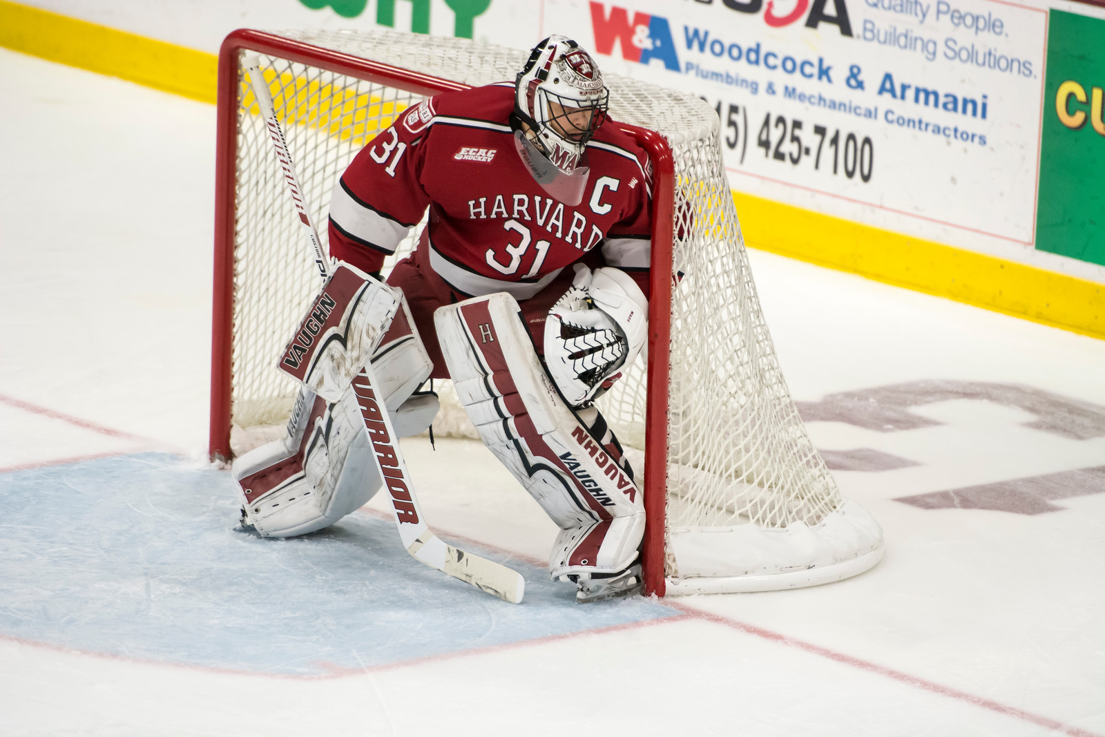 Tri-captain Merrick Madsen earned his starting role back from junior Michael Lackey on Saturday night. Lackey's short but impressive stint as Harvard's starting net-minder proved that the Crimson has multiple viable options between the pipes.