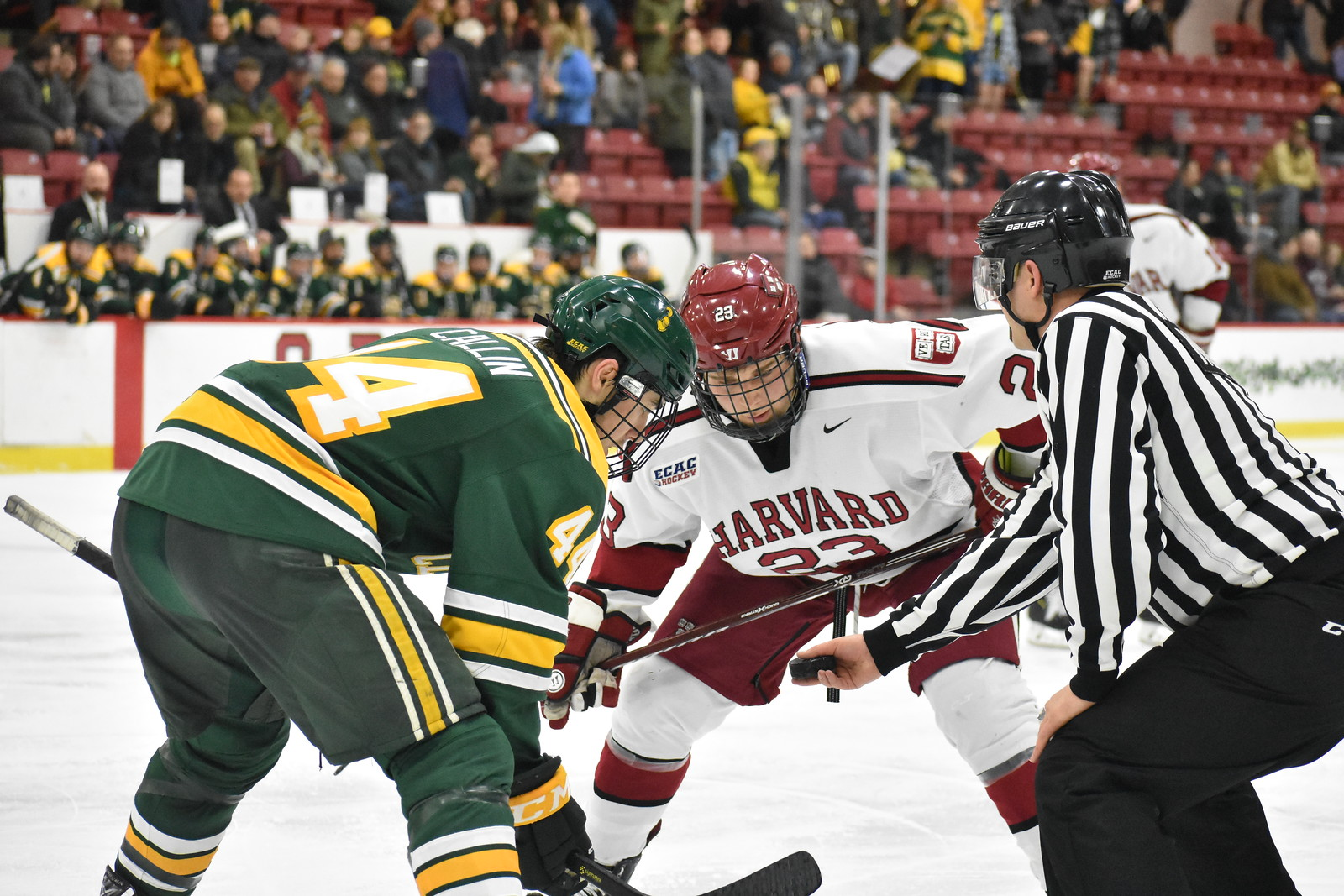 On Friday, the Crimson will look to avenge last year's ECAC semifinal heartbreak at the hands of the Golden Knights.