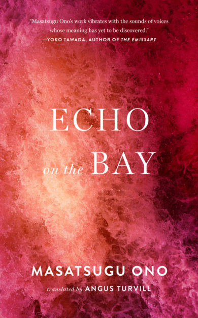 """Cover art for """"Echo on the Bay."""""""