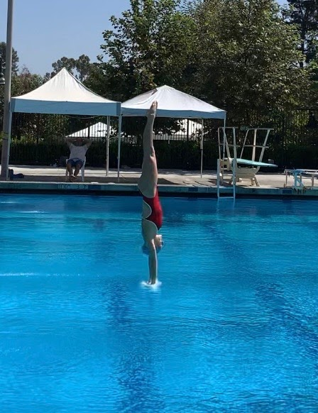 Elizabeth Miclau prepares to enter the water during a training session in Mission Viejo, Calif. From a height of 10 meters, even the slightest alterations can mean the difference between flopping and breaking the water with ease, so remaining compact is crucial.