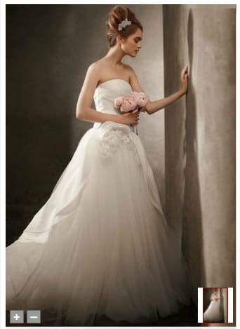 White by Vera Wang Bridal Gowns in Plus Sizes