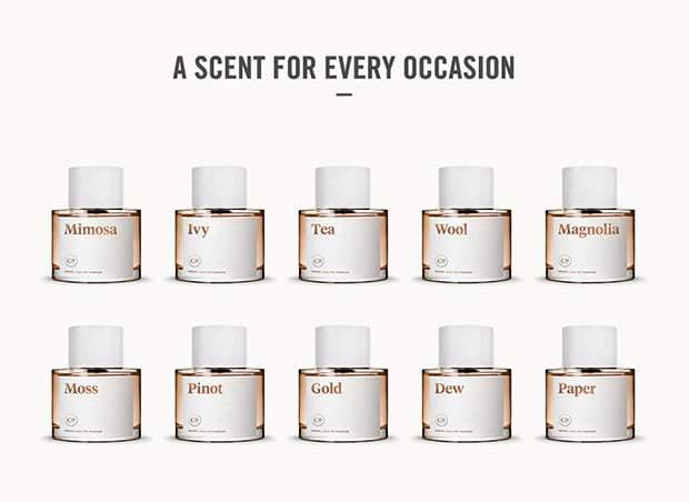 Commodity Signature Fragrances