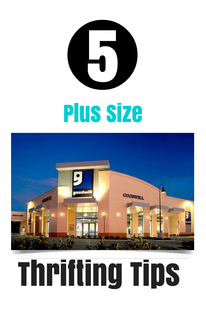 5 Plus Size Thrifting Tips on The Curvy Fashionista