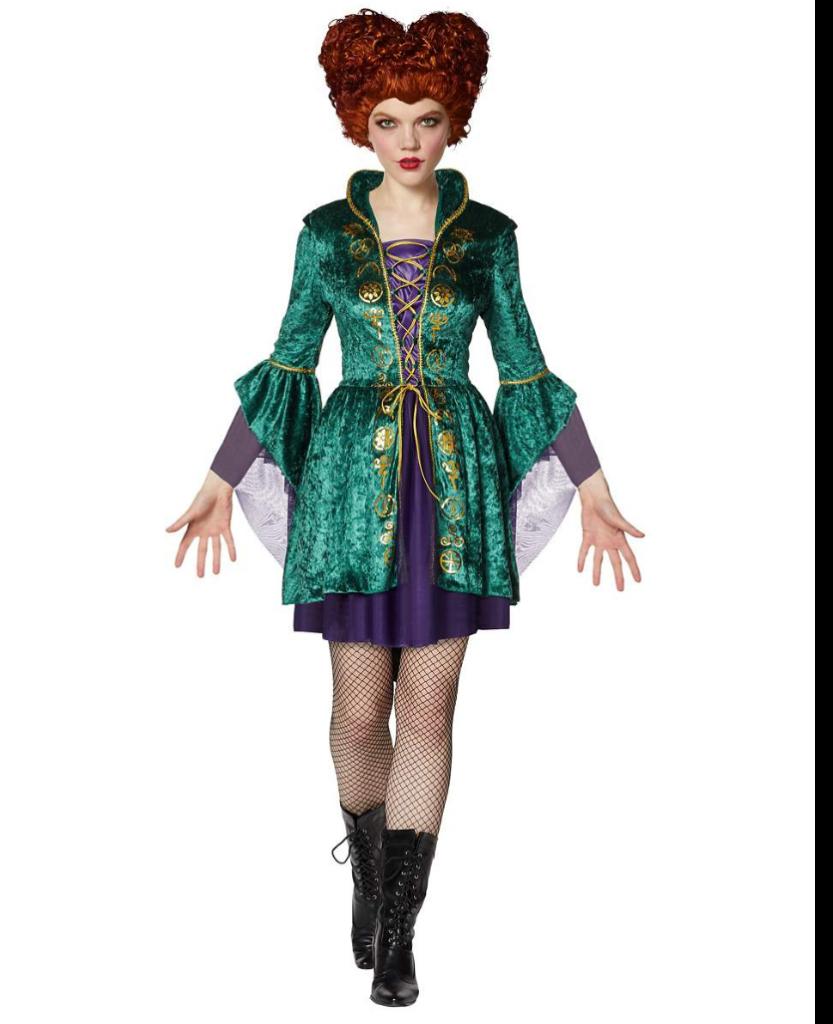 Hocus Pocus Winifred Sanderson Plus Size Dress full