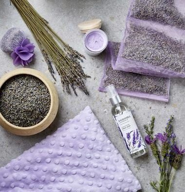 #TCFTurns12: Keeping it Calm and Cool with Sonoma Lavender!