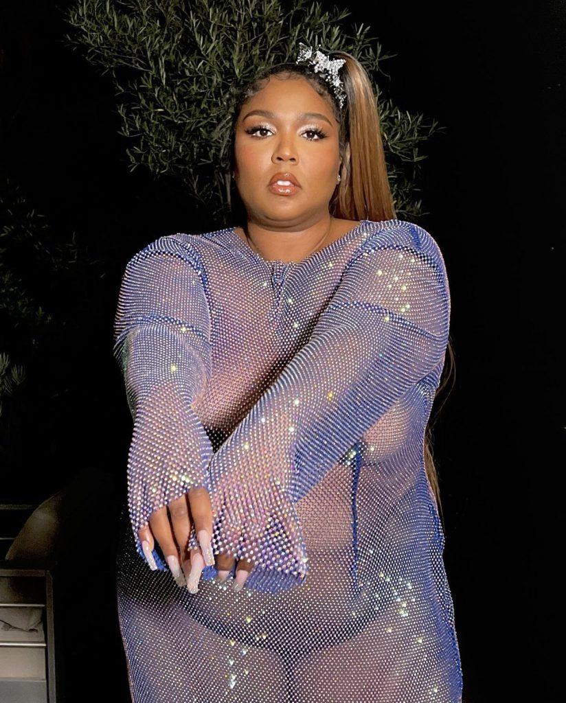 Sheer Lavender Dress Exposes Fatphobia