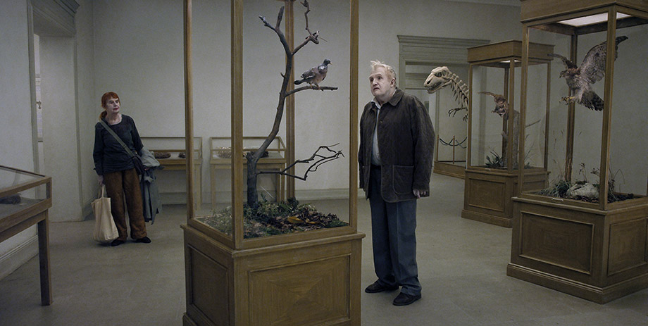 İnsanları Seyreden Güvercin (En Duva Satt på en Gren och Funderade på Tillvaron / A Pigeon Sat on a Branch Reflecting on Existence)