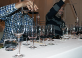 Catena Elevation: An Eye-Opening Lesson in Wine Blending with Nesti Bajda