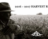 "Bodega Catena Zapata Harvest Report 2016 – ""Laura Catena's favorite vintage since 1995"""