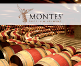 #12DaysOfTrialto - Food and Wine Pairing Featuring Montes Alpha Cabernet Sauvignon