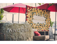 Champagne Bollinger Presents Life Can Be Perfect - Ancora Dining - Kim Bellevance Photographe