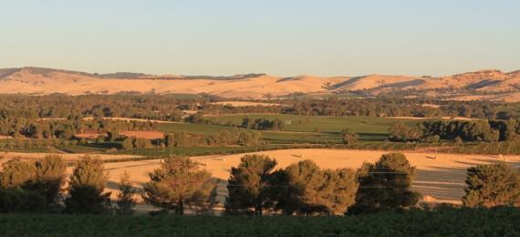 Landscape de la Ball Buster