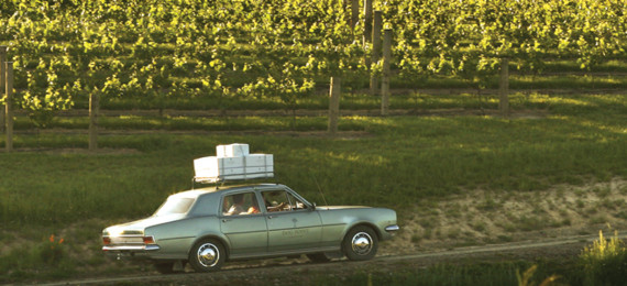 Car in the vineyard