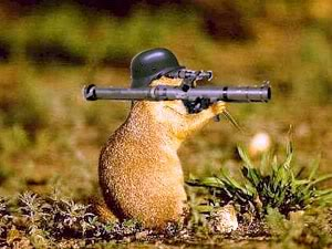 woodchuck with a rocket launcher