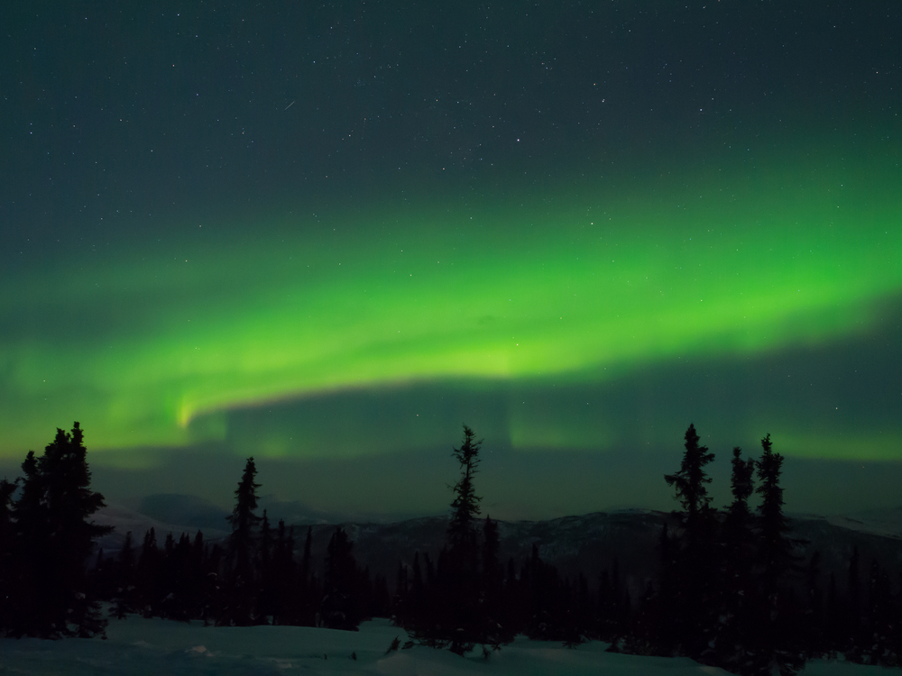 The Aurora over Chena Hot Springs