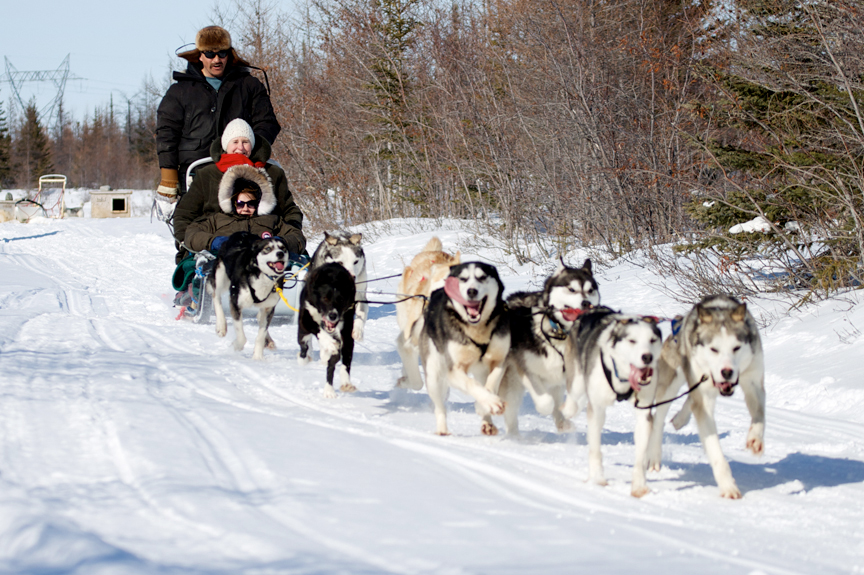 Dogsledding - ©Frontiers North