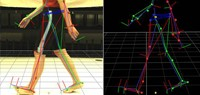 Human Locomotion and Movement Performance
