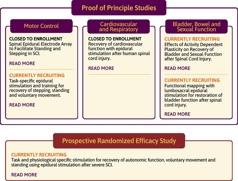 Proof of Principle Studies and Prospective Randomized Efficacy Study