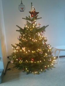 Wonderbaar Wie heeft de mooiste kerstboom van 2013? FT-17