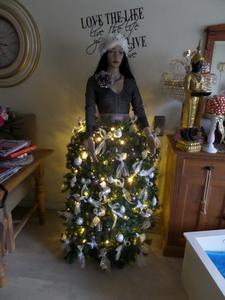 Verbazingwekkend Wie heeft de mooiste kerstboom van 2013? CG-85