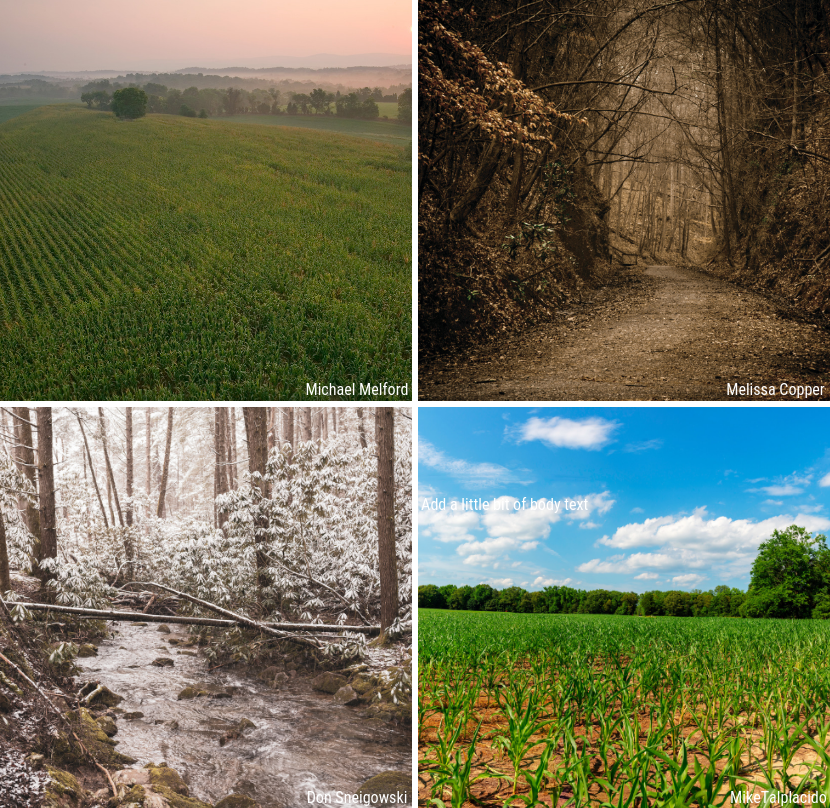 Battlefield Seasons Photography Contest | American