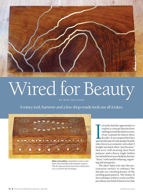 Wired for Beauty