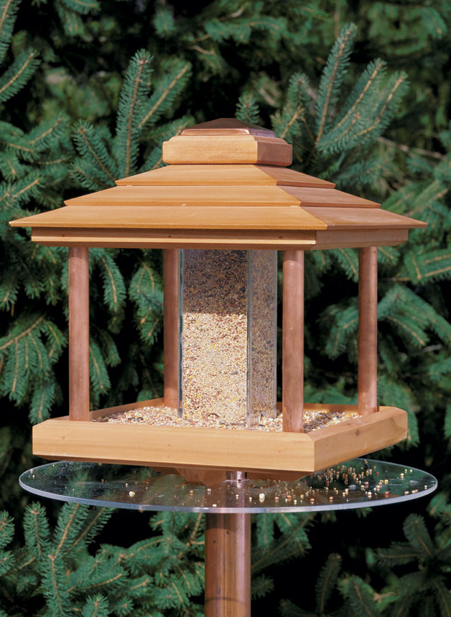 Seeding for Two? This project solves the two biggest problems with bird feeders. It has a unique lid that makes it a breeze to fill, and a guard that helps keep squirrels out of the food.