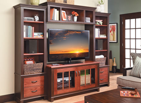 Stylish Entertainment Center