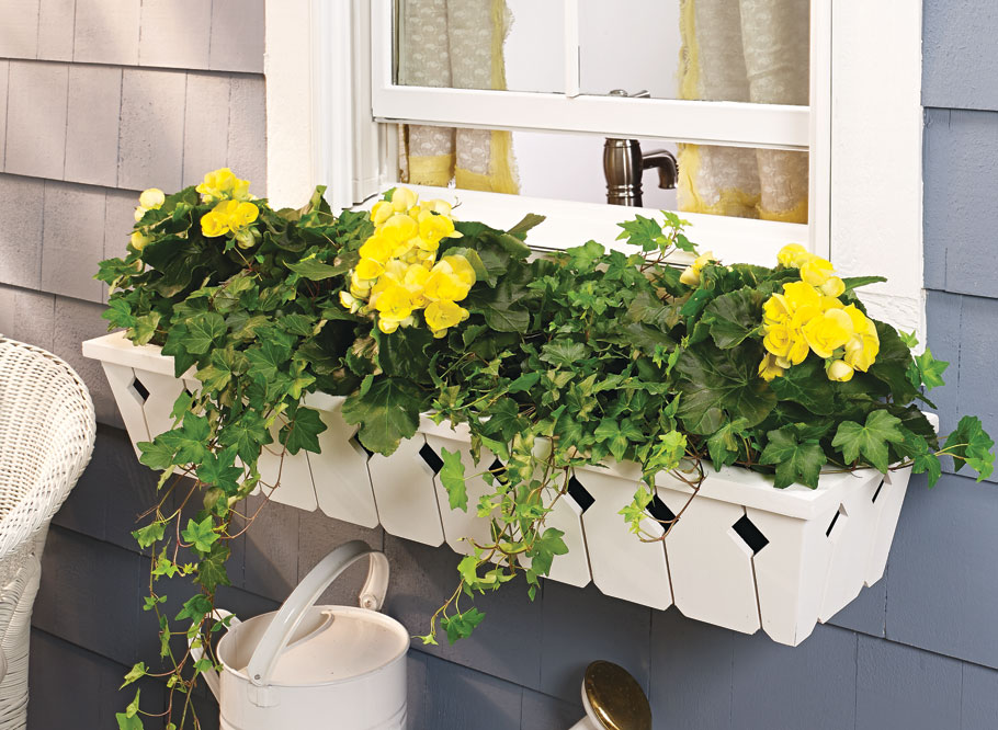 Give your home's curb appeal a little boost with these easy-to-build window planter boxes and learn a few woodworking tricks along the way.