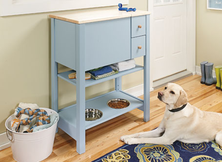 Compact Pet Feeding Center