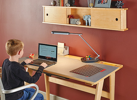 Small-Scale Home Office