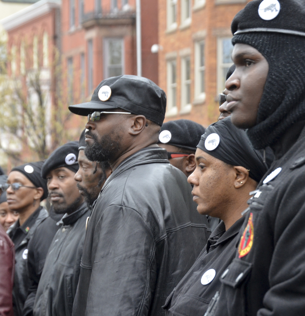 Black Panthers Can Make a Difference