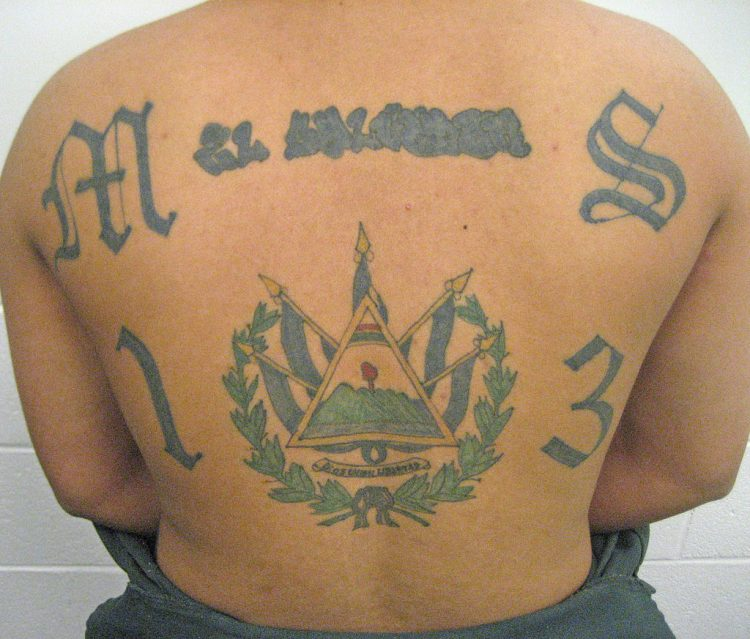 What is MS-13? The Gang Donald Trump Can't Stop Tweeting About
