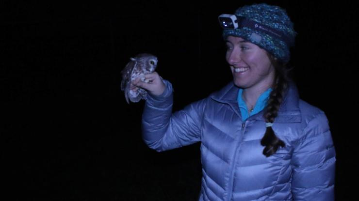 Grace Carey '21 with a saw-whet owl