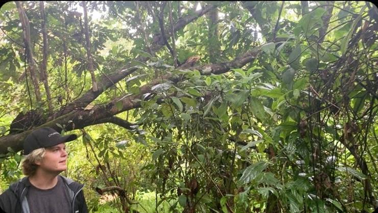 Finlay Adamson '22 in Bocas del Toro, Panama.