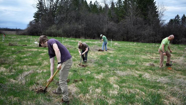 Students plant trees for Green Week next to the community farm on campus.