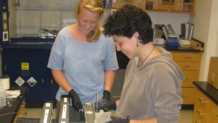 Natalie Elking '12 and Manique Talaia-Murray '12 sample a sediment core from Antarctica for their summer research projects.