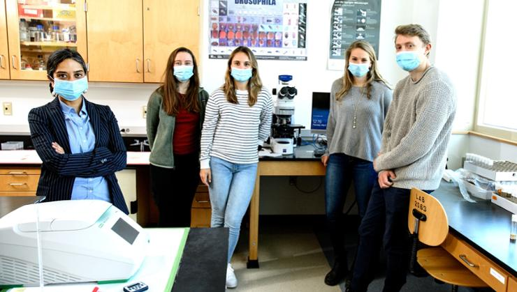 Assistant Professor of Biology Rhea Datta, Grace Carey '21, Meaghan Parlee '21, Eleanor Demaree '22, and Nathaniel Spicer '21 are working on gene activity in the early stages of embryonic development in fruit flies.