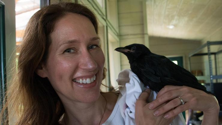 Assistant Professor of Biology Andrea Townsend and American Crow