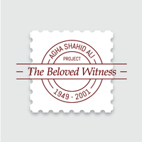 Beloved Witness Patricia O'Neill